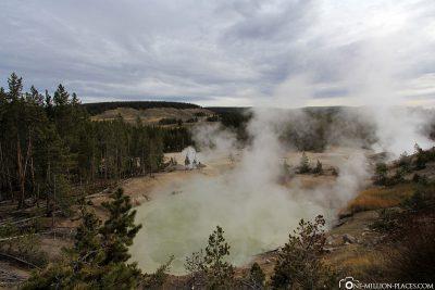 The Mud Volcano Area