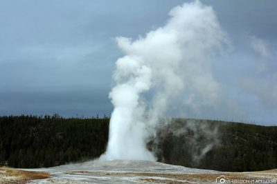 Der Old Faithful Geysir