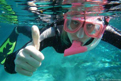 Snorkeling in Crystal River