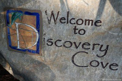 Discovery Cove in Orlando