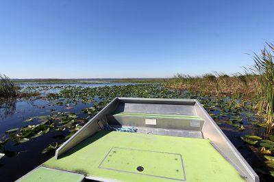 Der Lake Tohopekaliga