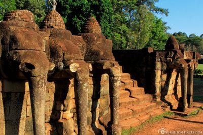 Die Terrasse der Elefanten