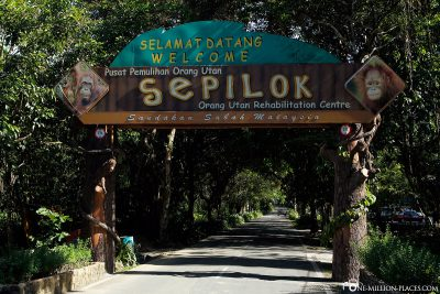Welcome to Sepilok Orangutan Rehabilitation Centre