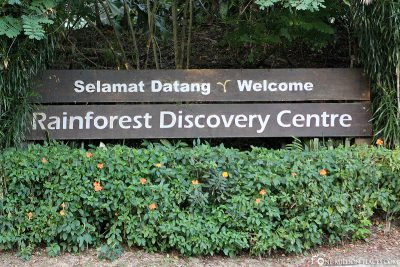 The Rainforest Discovery Center