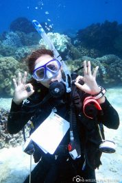 Our Divemaster
