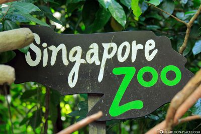 The zoo in Singapore