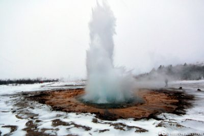 The Geyser Strokkur with Fountain