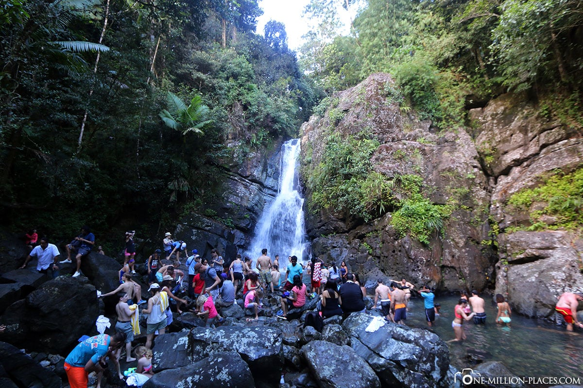 La Mina Waterfall, El Yunque Rainforest, Puerto Rico, National Park, Attractions, Day Tour, Travel Report