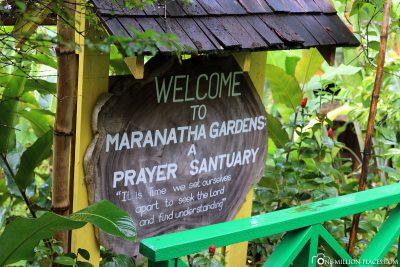 Maranatha Gardens