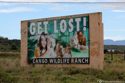 Suchergebnisse Webergebnisse Cango Wildlife Ranch and Conservation Centre