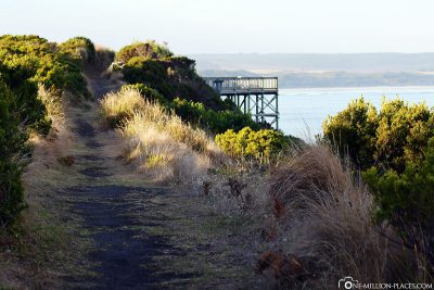 The hiking trail along the coast