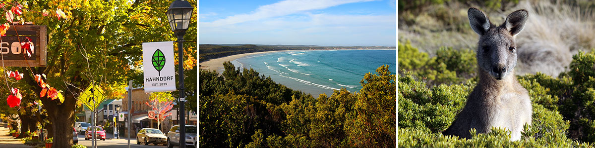 Cape Bridgewater Australien Headerbild