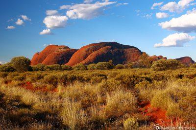 The rocks of Kata Tjuta