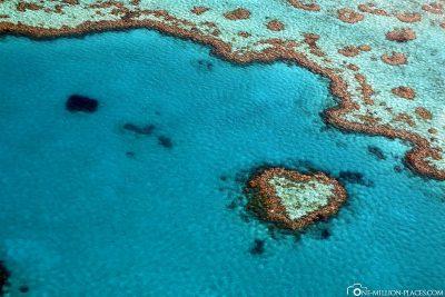 Flug über das Heart Reef