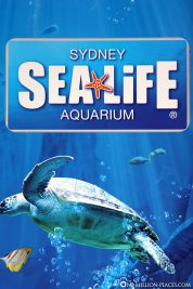 Eingang zum Sea Life Aquarium