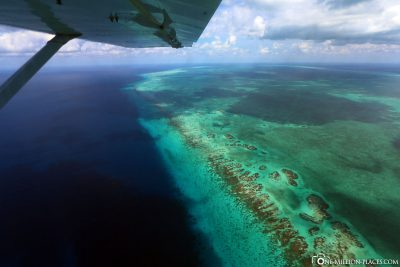 The Turneffe Atoll