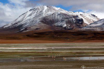 Bis zu 6000 Meter hohe Berge