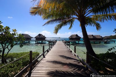 The way to the water bungalows