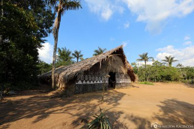 A village of the Amazon native population