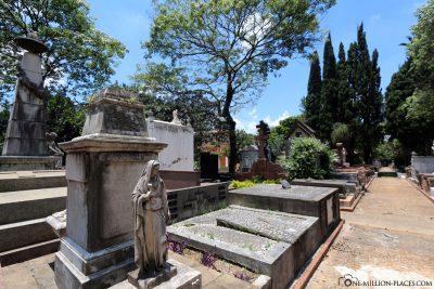 Der Friedhof Veneravel Ordem Terceira