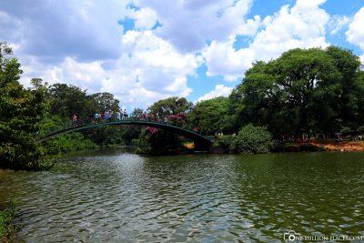 Der Stadtpark von Sao Paulo