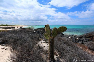 Der Bachas Beach
