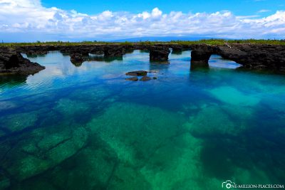 Drive through the beautiful canals on the coast