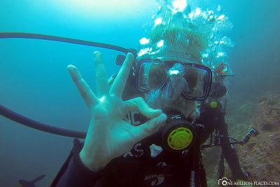 Diving at the Gordon Rocks