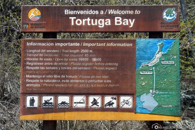 The Tortuga Bay on Santa Cruz