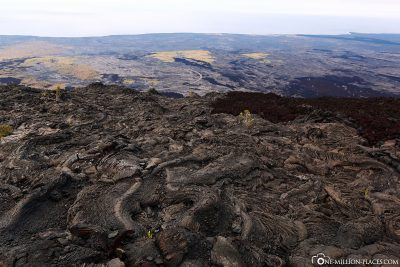 View from the lava fields to the coast