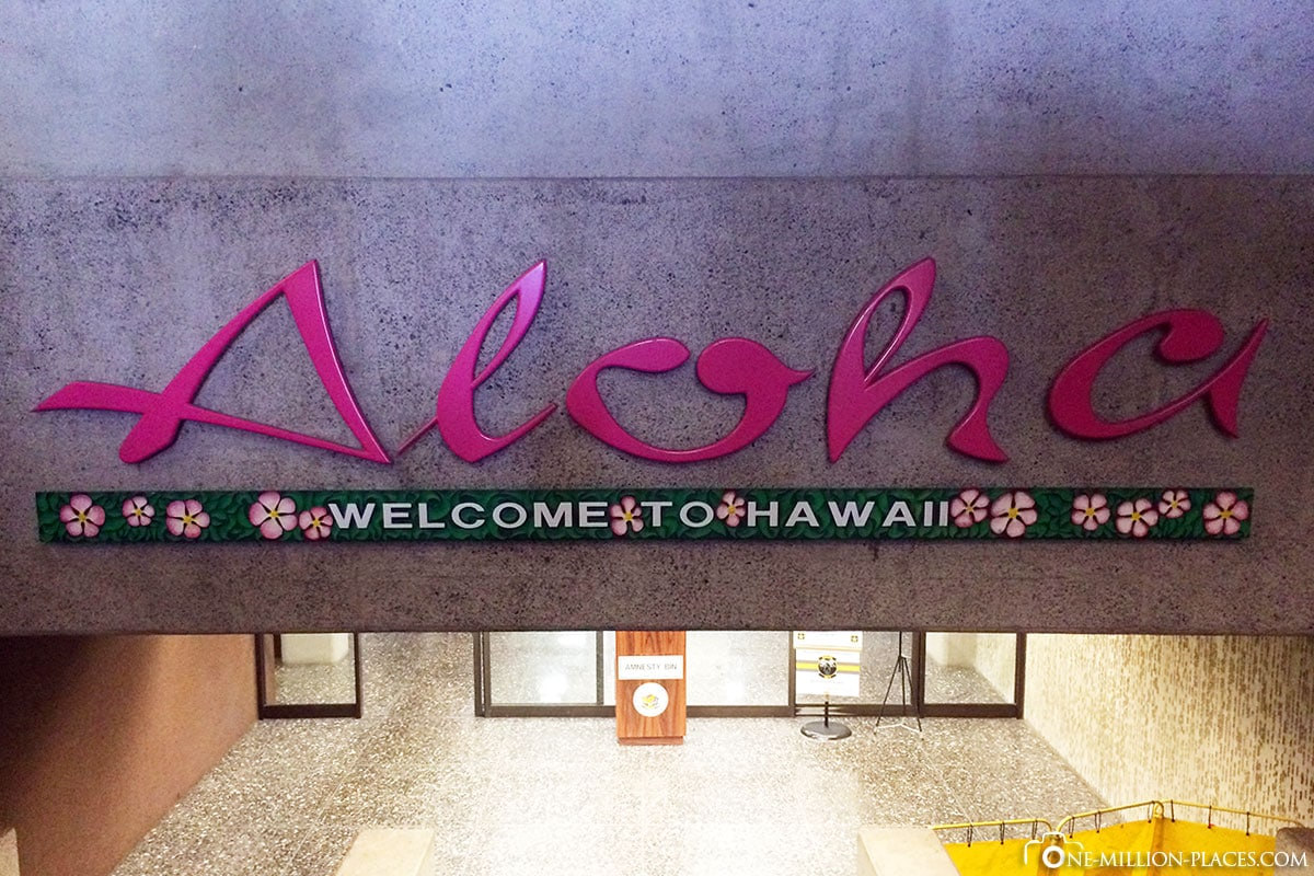 Aloha, Honolulu, Waikiki, Hawaii, USA, Auf eigene Faust, Reisebericht