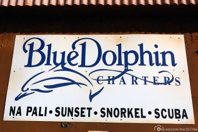 Blue Dolphin Charters Kauai