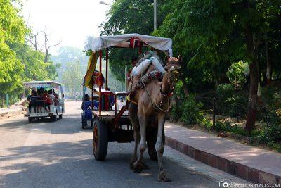 Kutschen auf dem Weg zum Taj Mahal