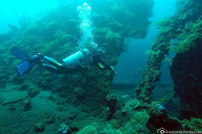 Wreck diving in Bali