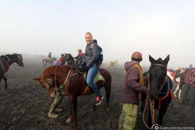 With horses to Mount Bromo