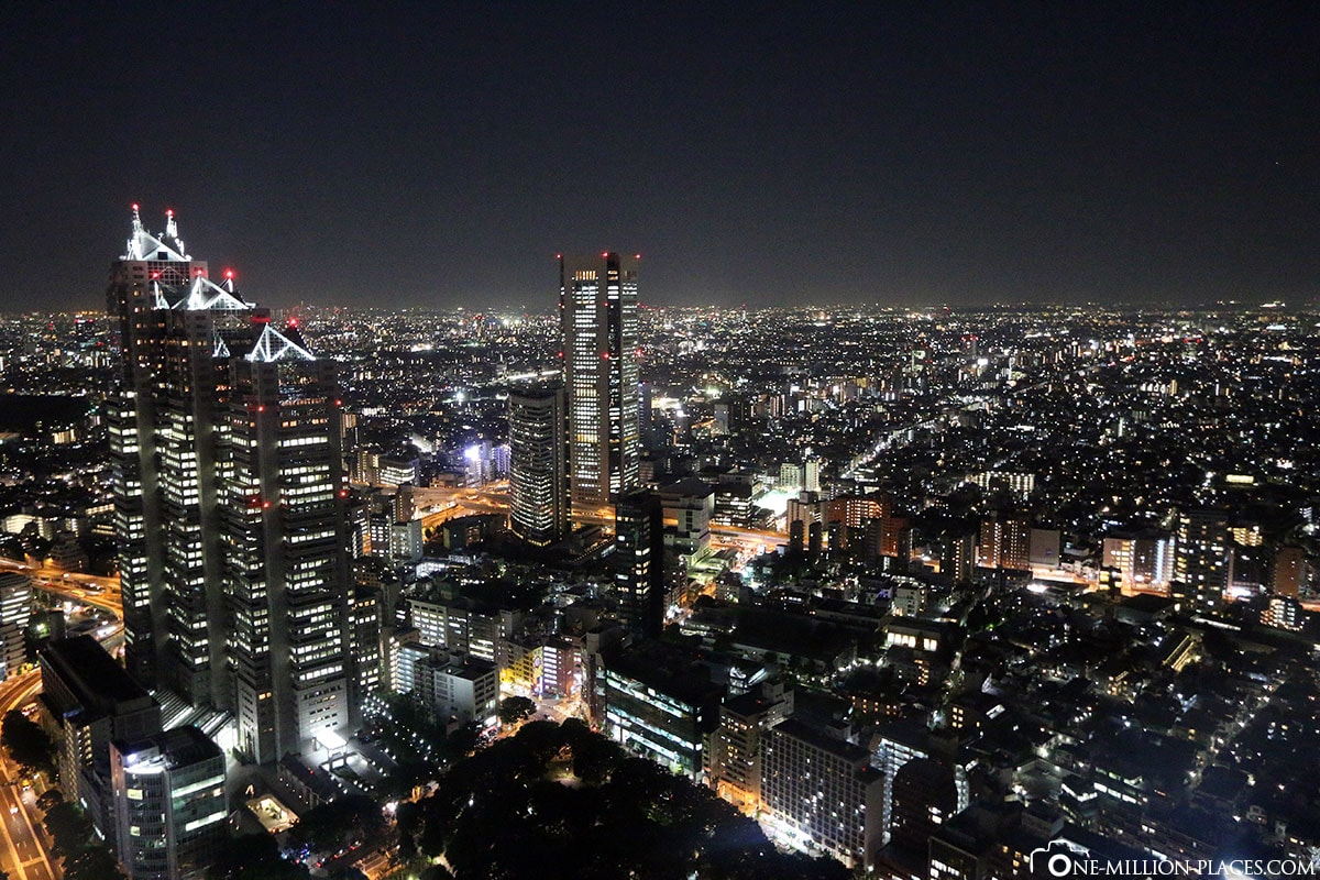 Skyline, Night, Tokyo, Japan, Attractions, Own, City Tour, Travelreport