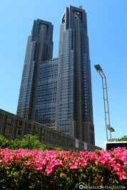 Das Metropolitan Government Building