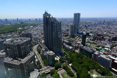 The view from the Metropolitan Government Building