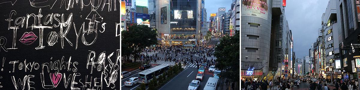 Tokio Shinjuku Haderbild