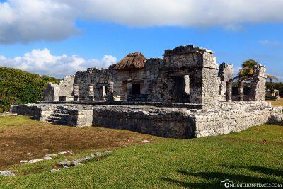 The ruins of the Maya
