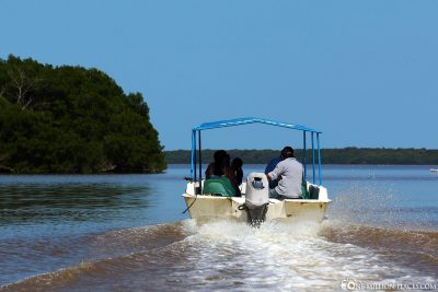 Boat trip in the lagoon of Celestun