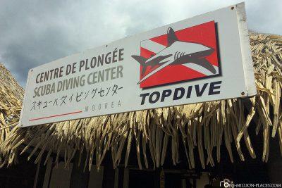 The diving school Topdive in Moorea