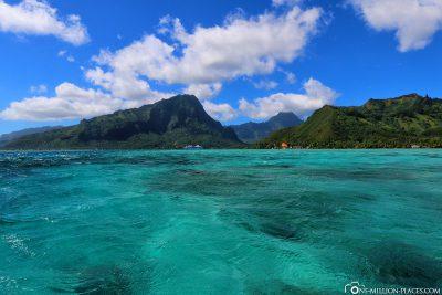 Boat trip through the beautiful lagoon
