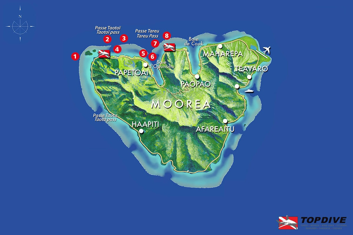 Diving spots on Moorea, diving, topdive, French Polynesia, South Seas, travel report