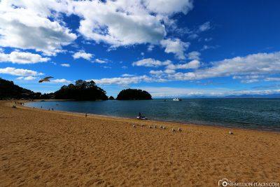 The beach in Kaiteriteri