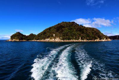 Die kleine Insel mit der Seelöwen-Kolonie