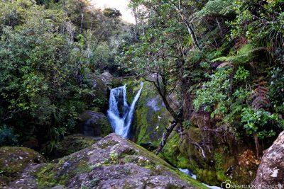 Der Bark Bay Wasserfall