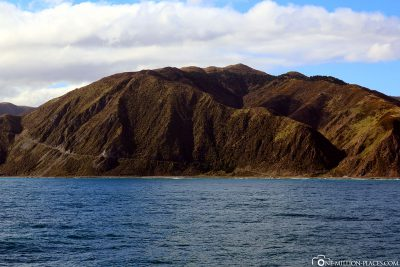 The coast of the North Island of New Zealand