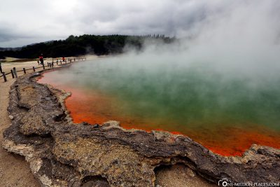 The Champagne Pool