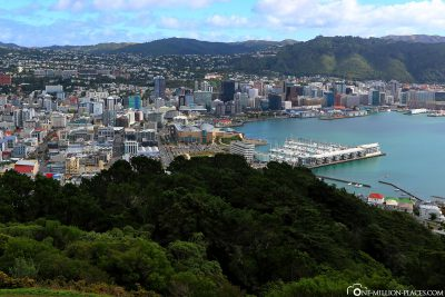 The view from Mount Victoria